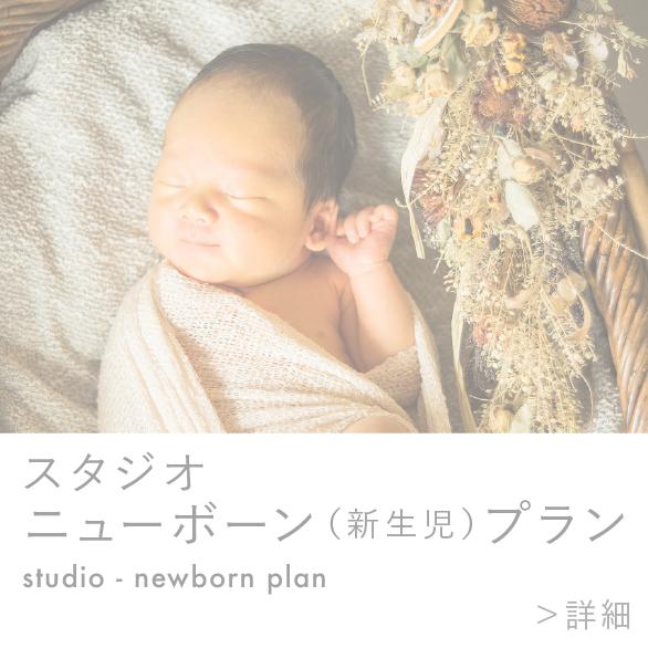 スタジオ|ニューボーン(新生児)プラン